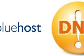 bluehost美国空间域名解析(DNS)方法教程!