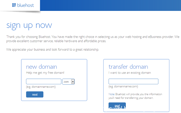 bluehost-domain